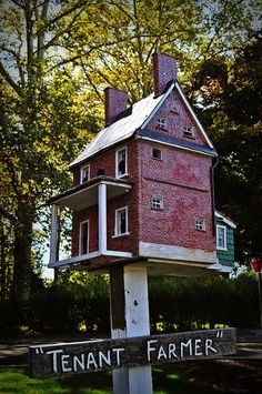 thomas+burke+birdhouses | tom burke birdhouses | For The Birds
