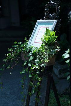 本日シェ松尾松濤レストラン様へ、5月、初夏の装花。 草花をたくさん。 毎度ながら美しい光に包まれる、その空間にうっとり。 ちなみ...