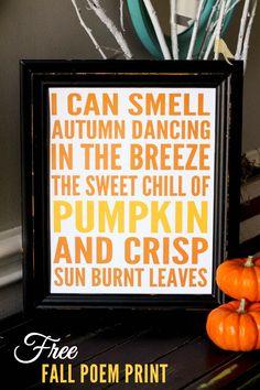Free Fall Poem Print