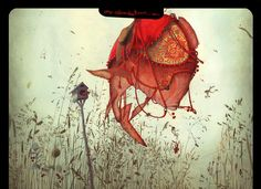 Rebecca Dautremer est l'une de mes illustratrices préférés. allez sur son site, il y a des merveilles.