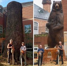 Wood bear in Poland. 📸 Paul's Chainsaw Creations Single Tree, Alien Logo, Sculpture Art, Funny Pictures, Elephant, Museum, Bear, Artwork, Painting
