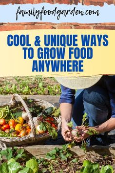 Wondering what are the cool and unique ways to grow food anywhere? So many people want to grow food yet many people believe that they can't because of where they live. Sunlight helps, even with indoor gardening, but you'd be surprised at the different and unique ways to grow food. Here's some inspiring ways to grow food no matter where you live! Check this pin! #growfood #gardening #food