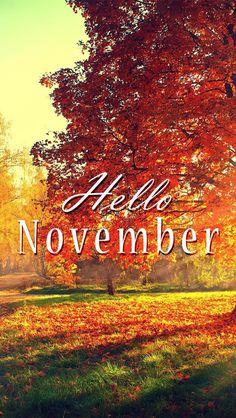 Perfect Wallpaper IPhone/hello November/fall ⚪️