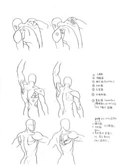 Anatomy_A_Strange_Guide_for_Artists_07.jpg (1240×1753)