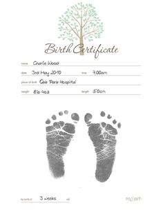 Baby Birth Certificate Template Fascinating Hawaii Bill Would Allow Gender Switch On Birth Certificate Without .