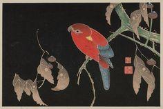 伊藤若冲: Ishizuri. Parrot on oak? branch, acorns - ボストン美術館