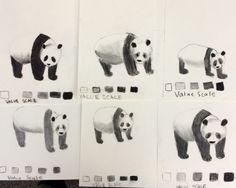 Charcoal Value Study- 6th Grade Panda Drawings This was the first lesson of the school year. Reviewing sketching, values & shading.