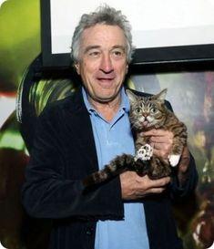 Mas famosos con gatos.Robert De Niro