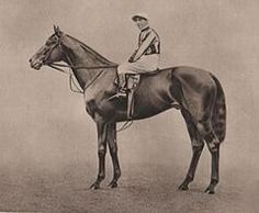 Pommern (1912–1935) was a British bred Thoroughbred racehorse an sire. In a racing career which lasted from 1914 to June 1916 he ran ten times and won seven races. As a three-year-old in 1915 he won the 2000 Guineas at Newmarket and the wartime substitutes for the Epsom Derby and the St. Leger Stakes to win a version of the English Triple Crown. After winning his only race as a four-year-old in 1916, he was retired to stud where he had limited success.