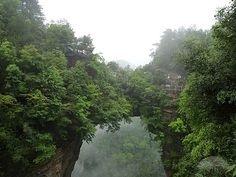 """''The First Bridge in the Heaven"""": The natural bridge is designed by nature across the cliffs. On each side of the red sandstone-structured bridge are ancient trees with verdant leaves and dense shades; there are natural steps in the east of the bridge, where you can climb up to the top of the bridge."""