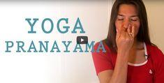 Much more about the picture right here meditation yoga Pranayama, Kundalini Yoga, Yoga Vinyasa, Yoga Nidra, Qi Gong, Respiration Yoga, Delphine Bourdet, Ayurveda, Yoga Fitness