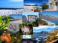 """If you are visiting South Africa don't miss this this stunning area! When you have """"been there and done that"""" come here to discover and relax and leave with an unique experience. Visit South Africa, Holiday Accommodation, Daydream, Relax, African, Unique, Travel, Viajes, Trips"""