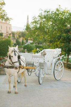 Horse and carriage wedding carriage Inspiration and resources to plan your dream wedding Horse And Carriage Wedding, Horse Wedding, Horse Carriage, Dream Wedding, Creative Wedding Favors, Unique Wedding Favors, Wedding Ideas, Wedding Goals, Budget Wedding