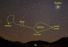 Five Planets Around Nearby Star Tau Ceti; One in Habitable Zone