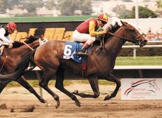 BEST PAL WINNING THE PACIFIC CLASSIC
