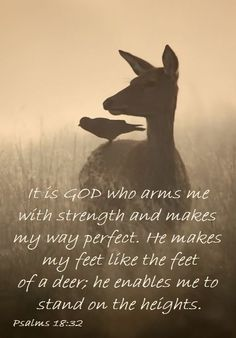 Psalm 18:32  love this verse and love Hind's Feet on High Places!