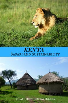Read how you can combine a safari holiday in Kenya with working in the local community through Audley Travel Places Around The World, Travel Around The World, Around The Worlds, New Travel, Future Travel, Audley Travel, Safari Holidays, Local Festivals, Exotic Places