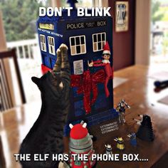 Elf on the Shelf / Doctor Who crossover (and Joe the cat)