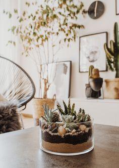 DIY: Sukkulenten- und Kakteenterrarium selbst basteln
