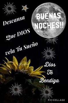 Feliz noche Blessed, Celestial, Movie Posters, Outdoor, Blessings, Spiderman, Happy, Good Night Wishes, Good Night Sweet Dreams