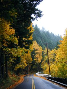 Next, you'll make your way to the beautiful Historic Columbia River Highway.