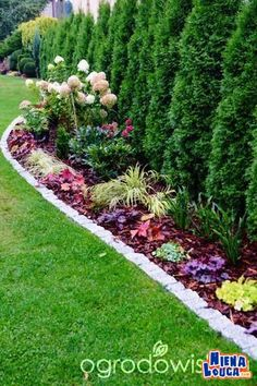 30 Trend Front Yard And Backyard Landscaping Ideas on A Budget - - Arborvitae Landscaping, Small Front Yard Landscaping, Privacy Landscaping, Garden Landscaping, Landscaping Ideas, Garden Yard Ideas, Backyard Garden Design, Lawn And Garden, Side Garden