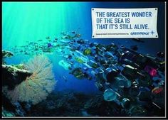 "Update on #plastic bans across the world ""The Greatest Wonder of the Sea is that It's Still Alive"" #quote"