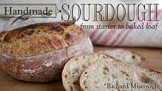 Detailed Instructions and photos for making sourdough breads using a stiff levain or liquid levain.