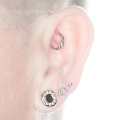 rook jewelry | Photo: Rook piercing by Noah Babcock. Jewelry by body vision los ...