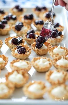 Mini Blueberry Cheesecakes made with Phyllo Cups #mini #blueberry #cheesecake #phyllo #dessert #bitesized #recipe Mini Blueberry Tarts, Blueberry Desserts, Blueberry Sauce, Blueberry Cheesecake, Phyllo Shell Recipe, Phyllo Recipes, Phyllo Cups, Mini Cheesecake Recipes, Cheesecake Cups