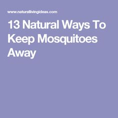 keep mosquitoes away on pinterest mosquitoes repel mosquitos and