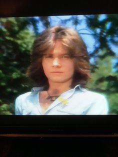 Gorgeous Robert Lamm back in the day