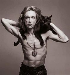 "épinglé par ❃❀CM❁✿⊱Nikki and Iggy Pop"" Nicky the jazz Cat Signed buy Carol Friedman Iggy Pop, Celebrities With Cats, Celebs, Crazy Cat Lady, Crazy Cats, I Love Cats, Cool Cats, Jazz Cat, Men With Cats"