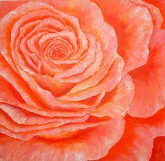 "'""Rose""' von Maria Killinger bei artflakes.com als Poster oder Kunstdruck $23.68"