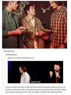 Poor little Misha :)