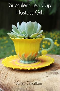 Succulent Tea Cup Hostess Gift that takes minutes to make and is very inexpensive!