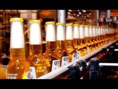 Mega Fábricas: Cervejaria Corona [Dublado] Documentário National Geograp...