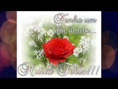 FALANDO DE VIDA!!: Um feliz feriado -  video de bom dia  - video para...