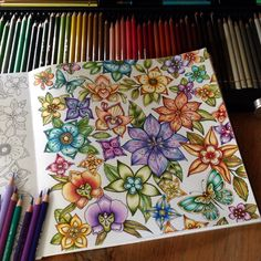 Goodmorning dear colourists and fans 🍀Finished my colorful flowers in the MJ from Johanna 💜🌺have a nice day or evening. Coloring Book Art, Colouring Pages, Adult Coloring, Colored Pencil Artwork, Color Pencil Art, Diy Collage, Magical Jungle Johanna Basford, Johanna Basford Secret Garden, Johanna Basford Coloring Book