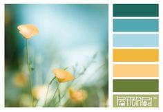 #patternpod #color #flowers