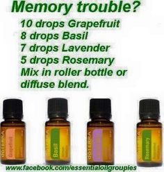 Wasn't someone asking about memory last night? Doterra Essential Oils, Natural Essential Oils, Doterra Blends, Natural Oils, Natural Products, Essential Oils For Memory, Elixir Floral, Basil Essential Oil, Healing Oils