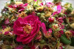 "Суха конфітура з троянди, ""терта рожа"" + бонуси – Пані Стефа Pancake Muffins, Sweet Recipes, Cabbage, Tasty, Vegetables, Rose, Plants, Pink, Cabbages"