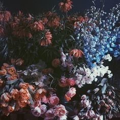 Gardenista Instagram Pick of the Week: @nicamille