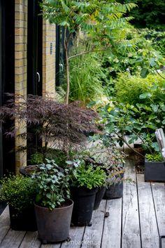 95 Inspiring Small Courtyard Garden Design Ideas - New ideas Small Courtyard Gardens, Terrace Garden, Back Gardens, Small Gardens, Garden Pots, Small Terrace, Garden Bar, Easy Garden, Herb Garden