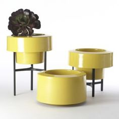 Direct from southern California come these hip little vessels by PAD Outdoor