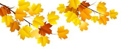 Autumn Branch PNG Clipart​ | Gallery Yopriceville - High-Quality Images and Transparent PNG Free Clipart
