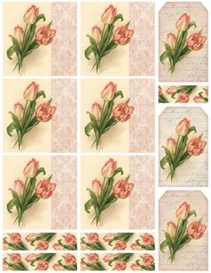 Pink Tulips ~ cards and tags