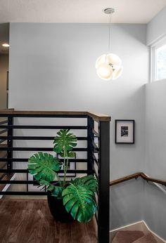 30 Trendy Ideas For Open Basement Stairs Entrance Half Walls Open Basement Stairs, Basement Ceiling Options, Basement Entrance, Cozy Basement, Open Stairs, Basement Ideas, Basement Office, Upstairs Hallway, Basement House