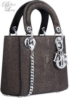 Brilliant Luxury * Dior 'Lady Bag' Fall 2015-16: