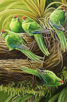 craig platt nz parrot artist